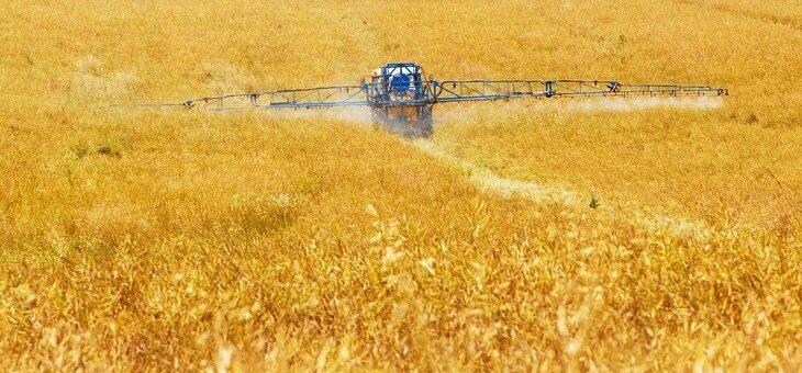 В Австралии снят запрет на выращивание генетически модифицированных культур