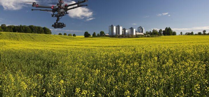 Потери оценили в миллионы долларов: кибермошенники нацелились на предприятия аграрного сектора
